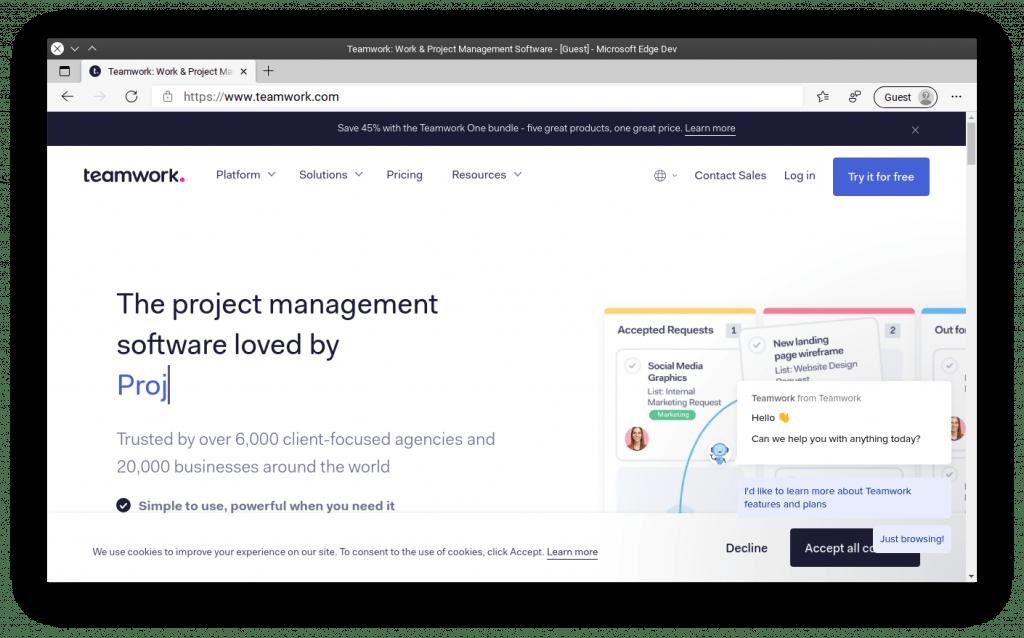 Teamwork - management tool for medium-sized teams